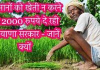 किसानों को खेती न करने पर 2000 रुपये दे रही हरियाणा सरकार